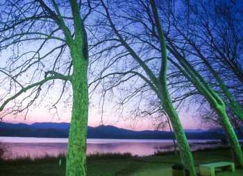 Pla de L'Estany, Lago De Banyoles, nocturno, árbol
