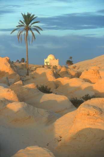 Túnez, Palmeras, Atardecer, religión.