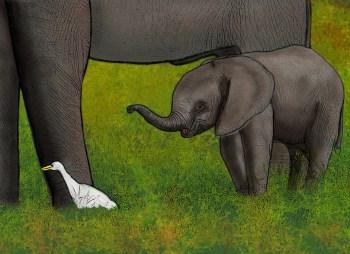 Animales de Kenya