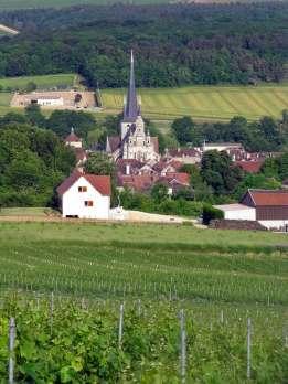 Campaña, Aube, Le Riceys