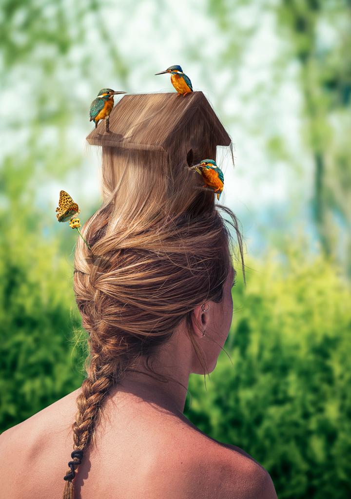 Nemanja Sekulic Photography  Birdhouse Hairstyle