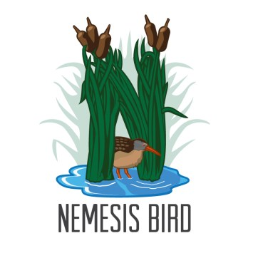 3. Kevin Ripka submitted this logo of a Virginia Rail peaking out from under some cattails.