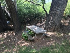 Picnicking in Patagonia