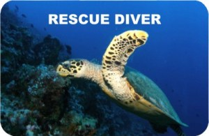 Certyfikat Rescue Diver