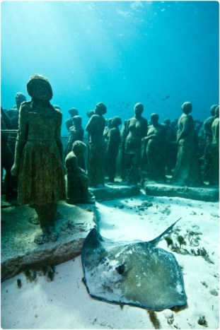 | The Silent Evolution | Depth 8m, MUSA Collection, Cancun/Isla Mujeres, Mexico.