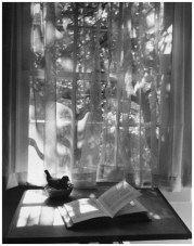 | Newtown, Conn. (window curtains and open book), 1959 |