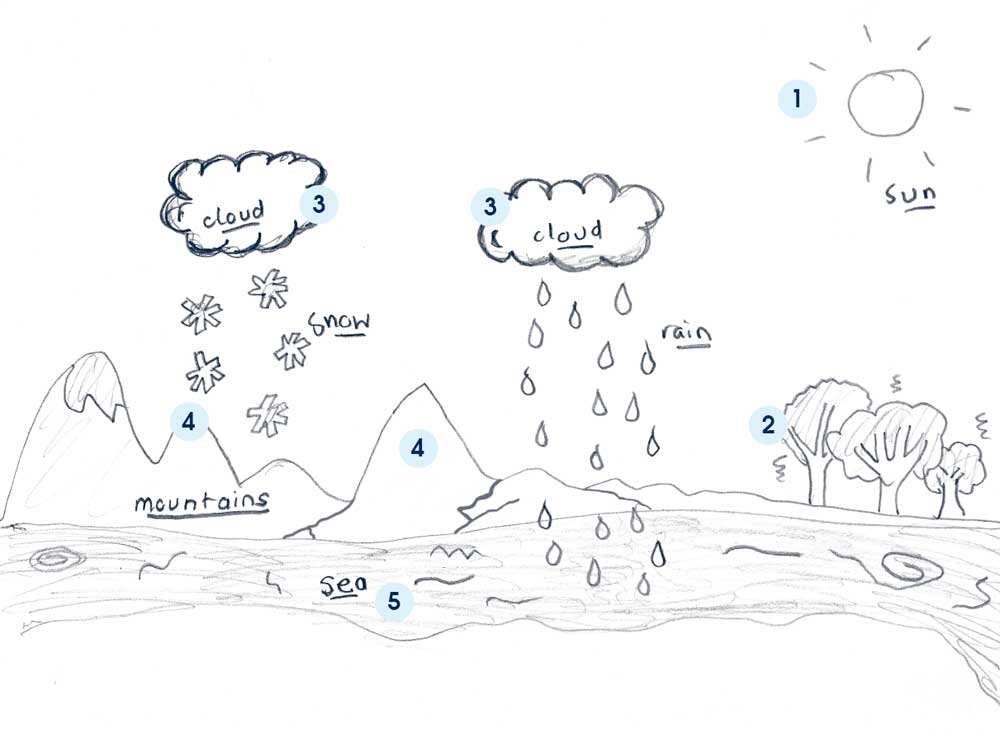Free coloring pages of water cycle diagram