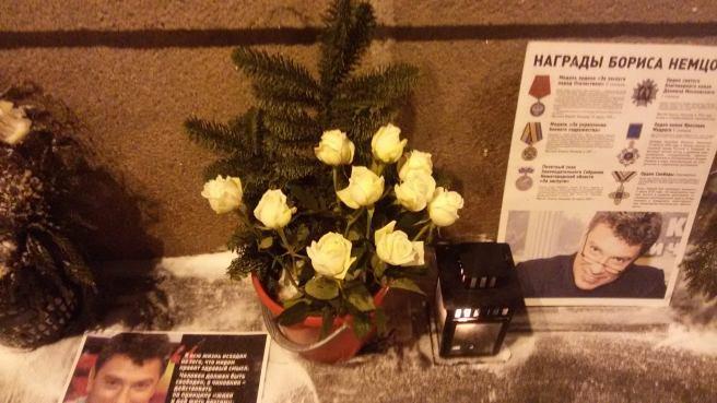 Свежие цветы: светлые розы и хвоя. Долго будут стоять