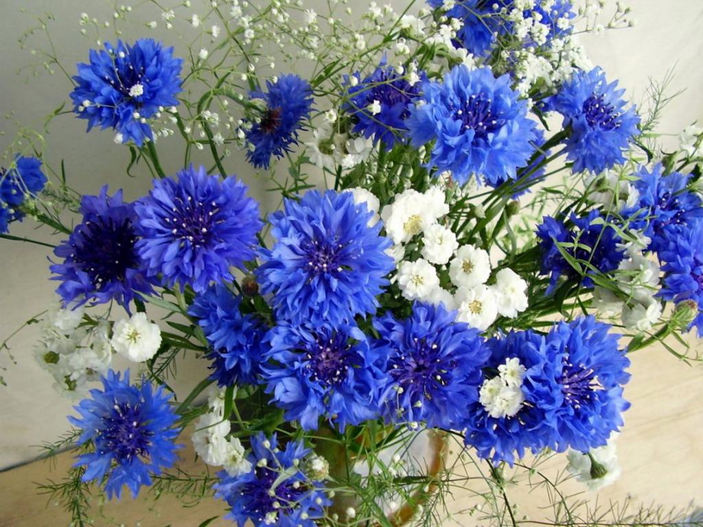 buketi-cvetov-06.jpg
