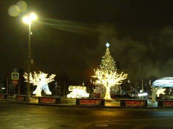 21.12.2018 Дежурство на мосту Немцова Скоро Новый год