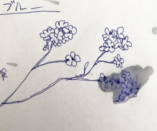 忘れな草ブルー耐水実験1