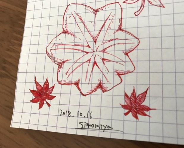色彩雫の紅葉で描いた絵