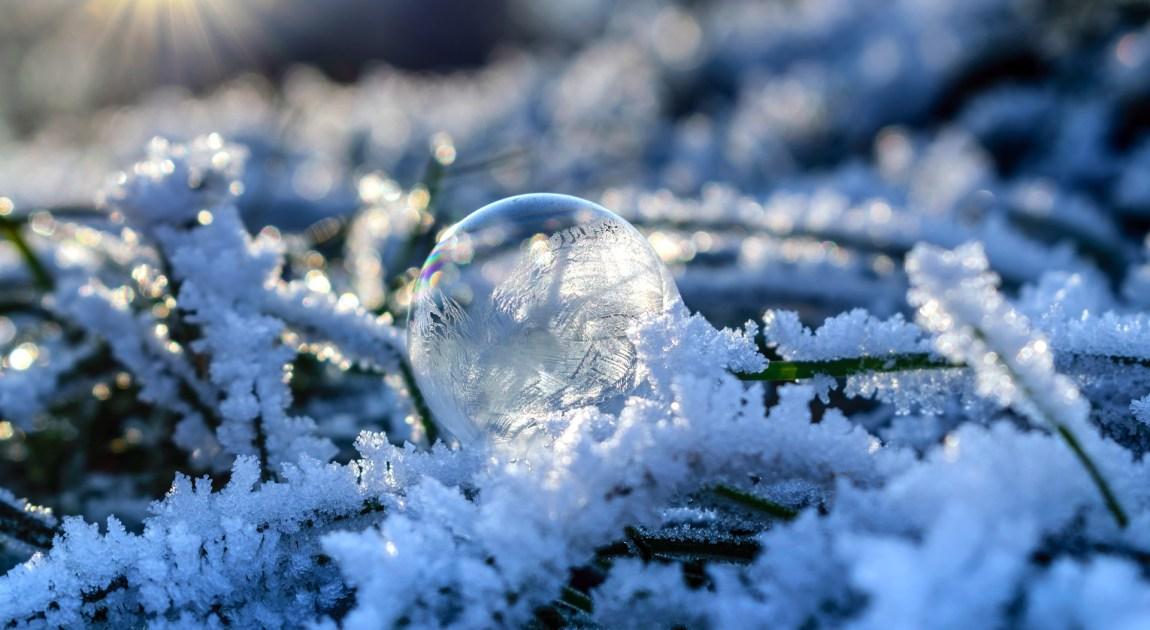 冬 寒い 朝日 霜