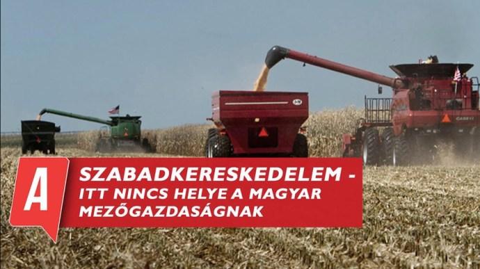 Szabadkereskedelem – itt nincs helye a magyar mezőgazdaságnak