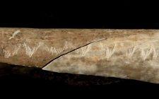 Rejtélyes jeleket vájtak emberi csontokba a 15 ezer évvel ezelőtt élt barlanglakó kannibálok