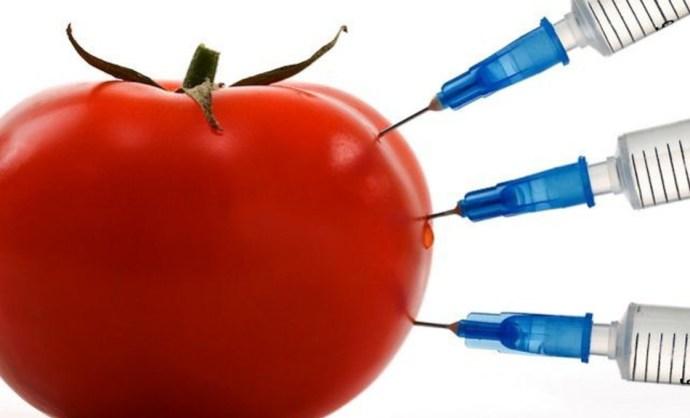 Annyira mentes Magyarország a GMO-któl, hogy már a szervezett bűnözők is ebben utaznak