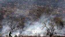 Zsidó telepesek olajfa ültetvényeket gyújtottak fel a megszállt Ciszjordániában