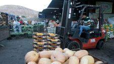 Izrael betiltja a Jordánián keresztül zajló palesztin mezőgazdasági exportot