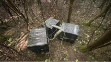 Három csempészkísérletet akadályoztak meg a határőrök Kárpátalján