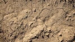 Úgy bánik talajával Európa, mintha lábtörlő lenne