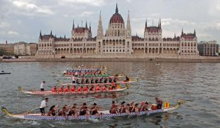 Lenyomhatják a magyar egyetemek a Harvardot