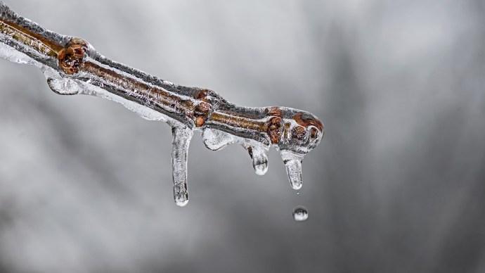 Meteorológusok: több furcsaság is volt az idei télen