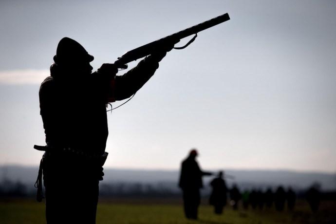 Egy vadászat kellős közepébe keveredtek közmunkások Zalában