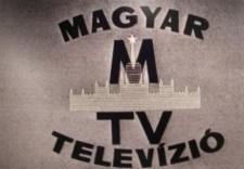 Állami hírtelevíziót terveznek