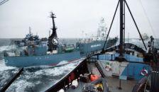 Megtörtént az első fizikai incidens az állatvédők és a halászok között
