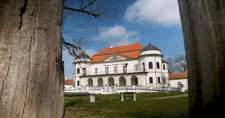 Megkezdték az egykori télikert felújítását a Zempléni Múzeumban