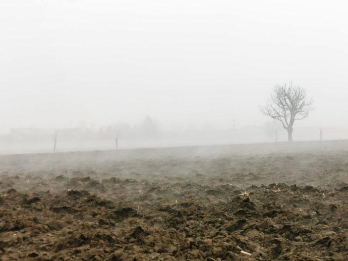 Ködbe bújt települések és a láthatatlan természet – Képriport