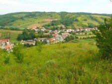 Kétmillió forintot ad egy takaros baranyai sváb falu az odaköltöző családoknak