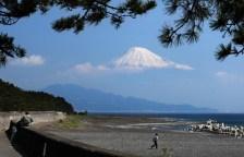 Volt japán turanizmus is, sőt, manapság is egyre többet foglalkoznak vele