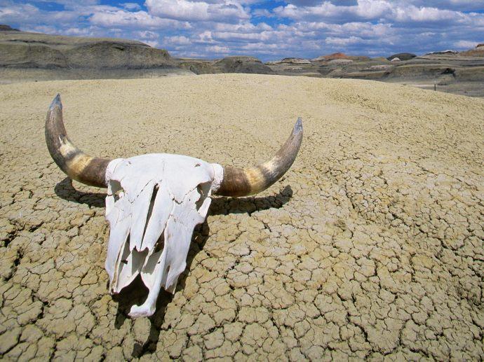 """Beindult a """"hőturizmus"""" a Halál-völgyben"""