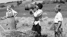 A padláslesöprő Nagy Imre rajongóinak figyelmébe: így sorvasztotta el a falvakat a zsidókommunista rezsim