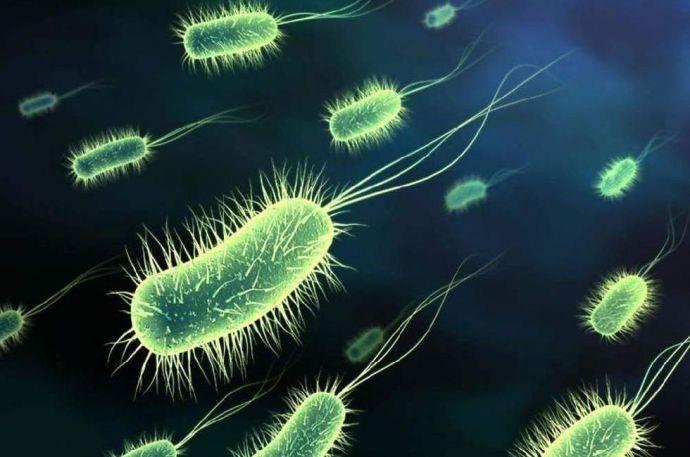2050-re ezek a betegségek pusztítóbbak lesznek a ráknál