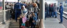 Menekültcunami Győrben
