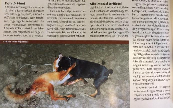 Állatkínzásra biztatnak Semjén Zsolték vadászlapjában