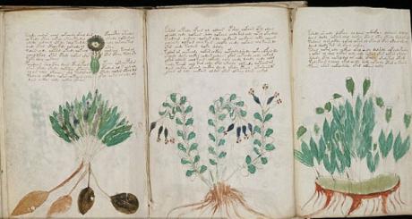 Elfelejtett azték nyelven íródhatott a világ legtitokzatosabb kézirata