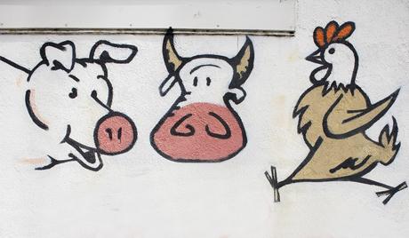 Dániában betiltották a kóser és a helal vágást