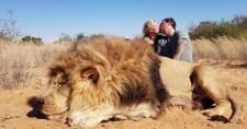 """Nem az oroszlán a király: a teteme fölött csókolóztak a """"vadászok"""""""