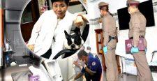 Saját fagyasztójába betonozva találtak meg egy milliomos nőt Thaiföldön