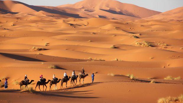 Nem felgyorsította hanem ötszáz évvel eltolta a Szahara elsivatagodását az emberi beavatkozás