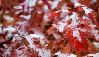 Ez már nem tréfa: erősen rajtot vesz a tél