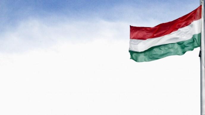 30 éve még a házakat is zászlók díszítették a nemzeti ünnepeken