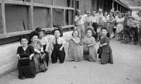 A hét törpe kalandjai Auschwitzban