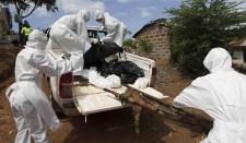 Ebola-járvány, mint a civilizációs modell válságának a jele