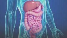 Hasonlóan kezdődhet a vese, a máj, a gyomor és a hasnyálmirigy daganata