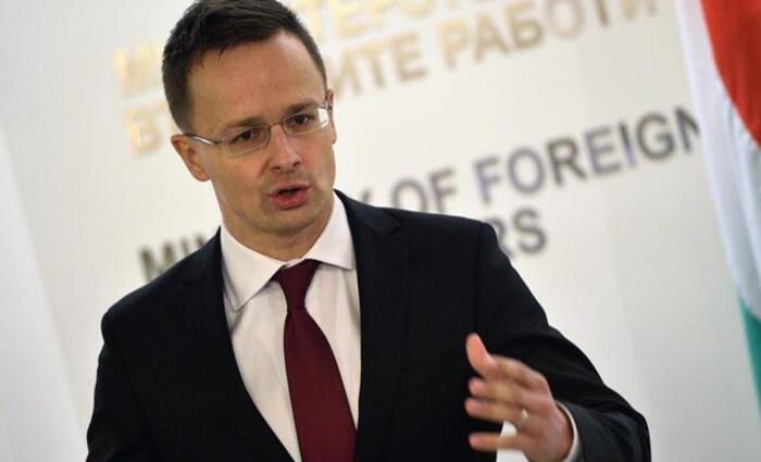 Magyarország azt szeretné, ha Ukrajna minden területen engedélyezné a magyar nyelv használatát