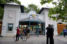 Új látványossággal csalogat a Fővárosi Állatkert